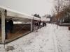 winter-wonder-feest-2010-280